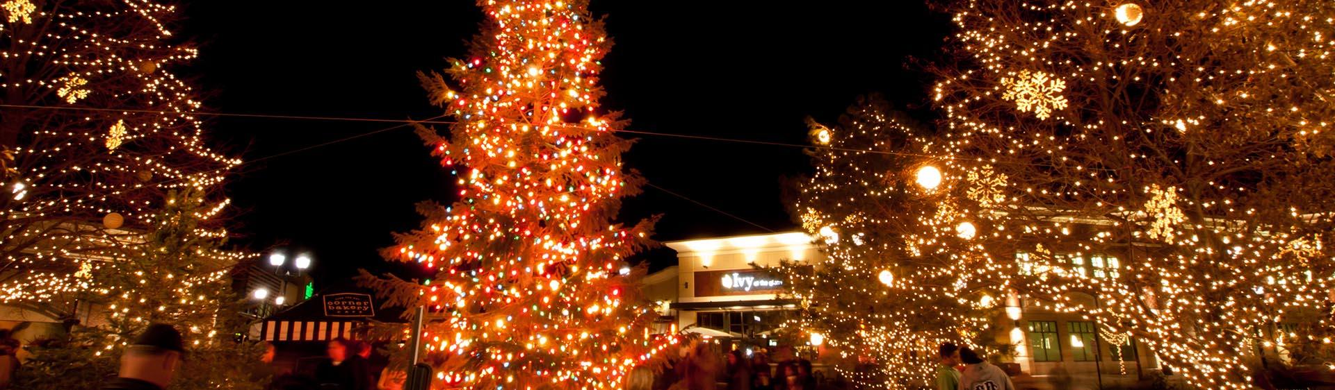 Cochrane Christmas Light Installation, Christmas Light Company and Holiday Lighting Installation